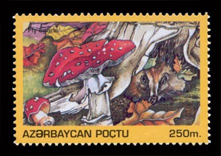 Fly Agaric Stamp