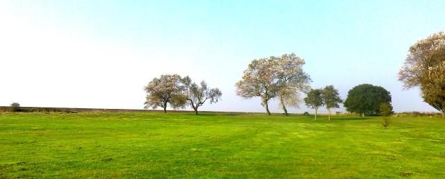 Bure Park