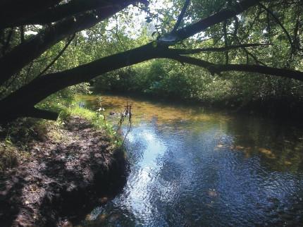 River Tud