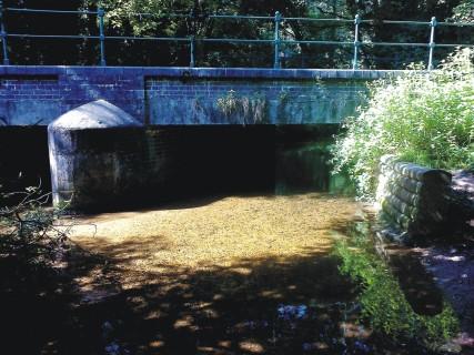 Tud Bridge