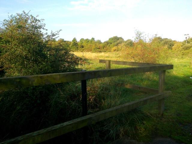 Cobholm Common Land