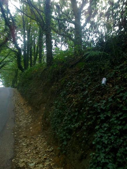 Deep Cut Road