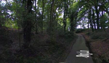 Dog Lane, Easton