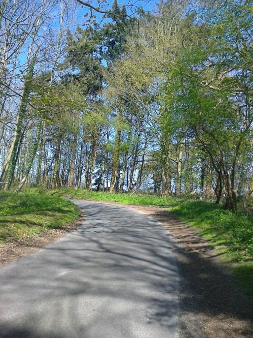 A Broadland Hill