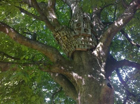 Bird Castle