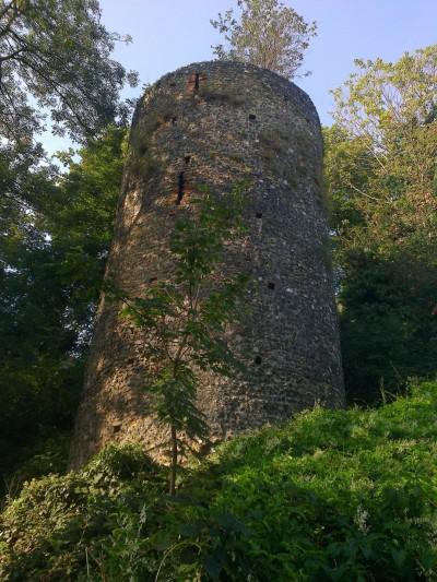Carrow Tower, Norwich Walls