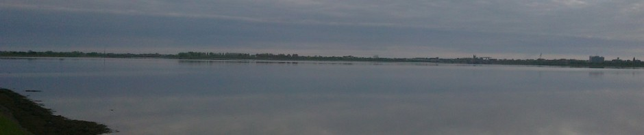Breydon Reflections