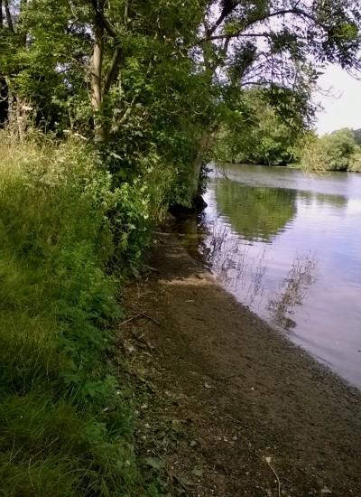 River Yare Whitlingham 07 16