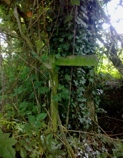 Way Marker Yelverton 07 16