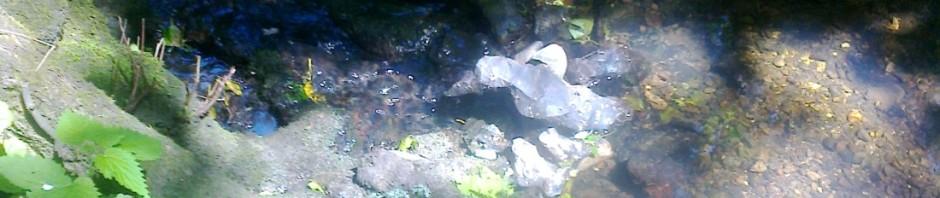 Beneath the Water Shotesham