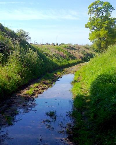 Wash Lane