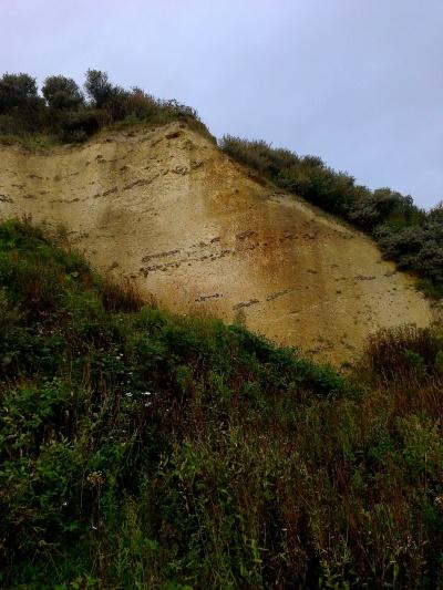 Bedrock at Overstrand