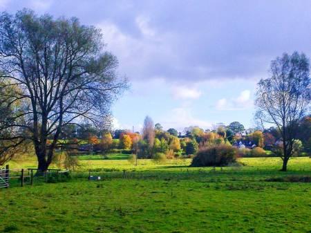 autumn-tas-valley