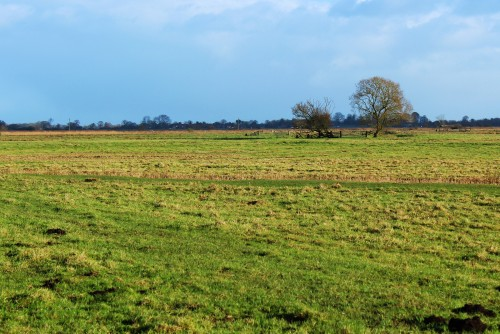 Landscape with Stokesby