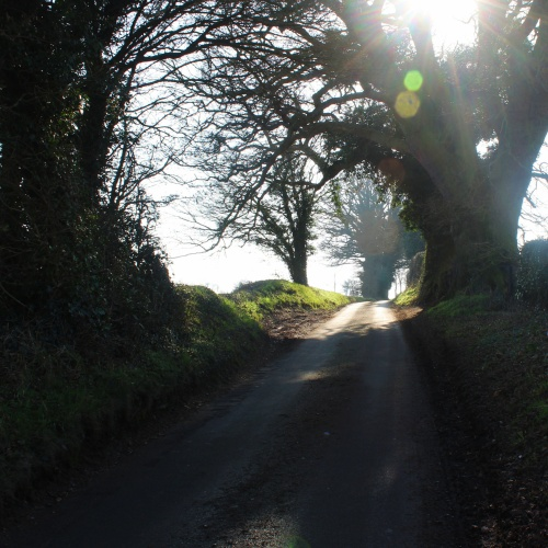 Hilly Henstead