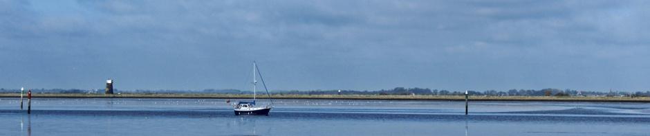 Shelducks and boat on Breydon
