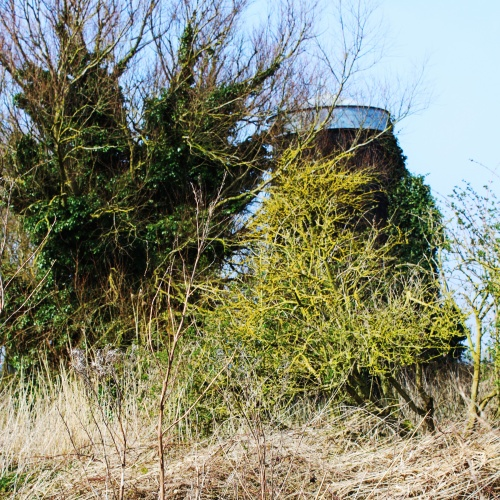 Tunstall Dyke Tower Mill from east