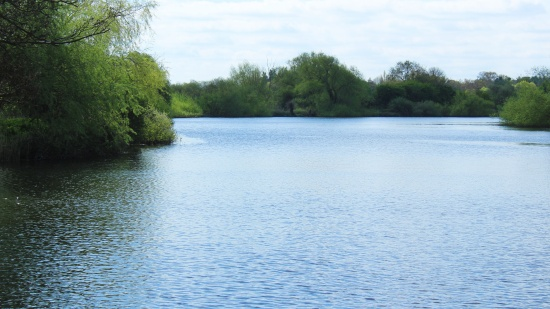 River Yare at Surlingham Ferry House