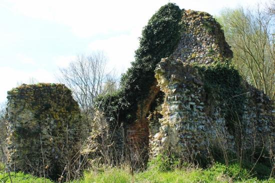 St Saviour's ruins at Surlingham