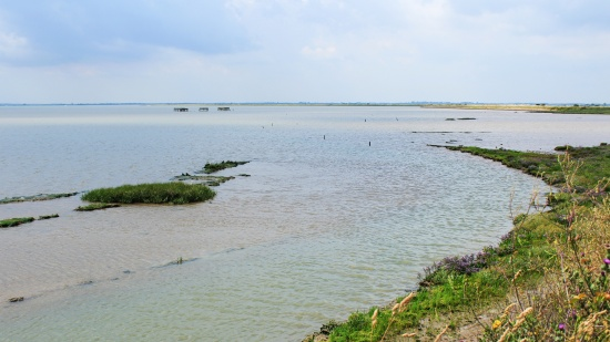 Breydon Water, remnant of the pre-Roman Great Estuary