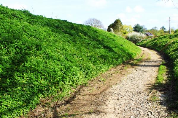 Wash Lane (S) Saxlingham