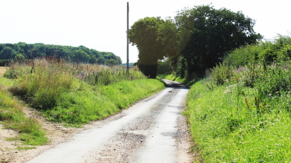 Wash Lane (N) Saxlingham