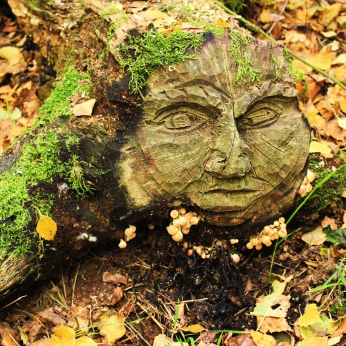 Green Man with face fungus