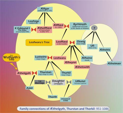 Leofwaru's_Gene Tree