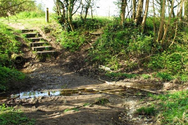 Mud Hole, Saxlingham