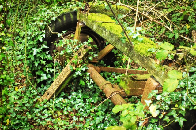 Cart and Ivy Vintage Nature