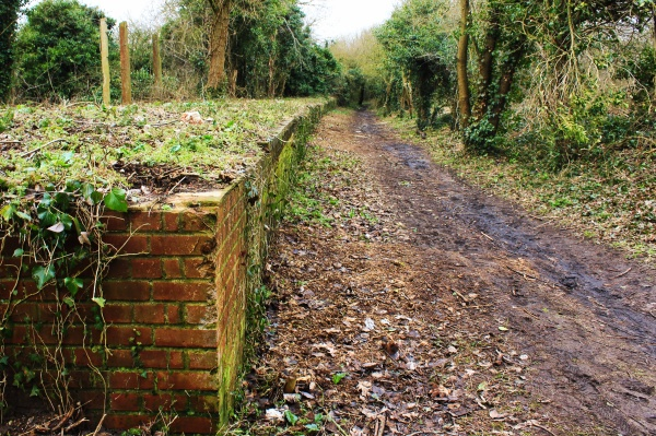 Marriotts Way at New Costessey