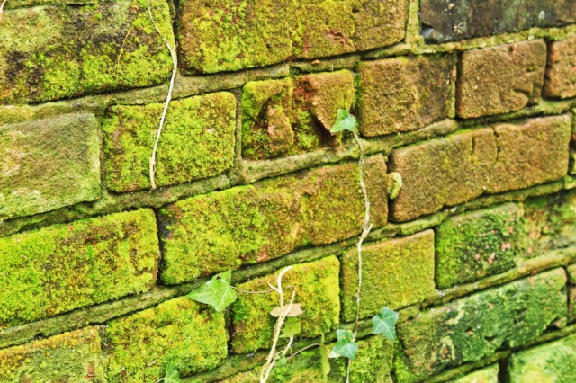 Bricks at Costessey Station