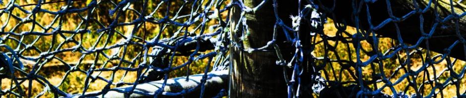 fishing net at Southwold