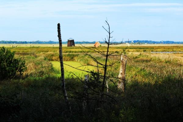 Mills on the Waveney