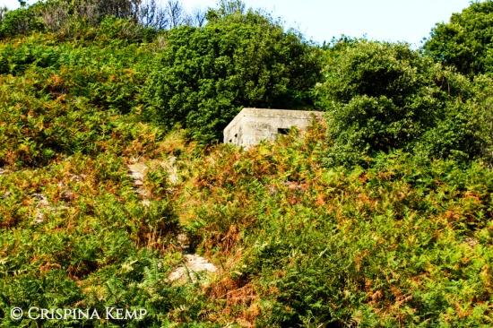 Bunker Cliff